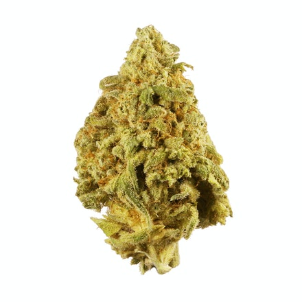 Picture of 9 lb Hammer strain