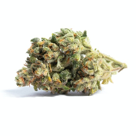 Picture of Acapulco Gold strain