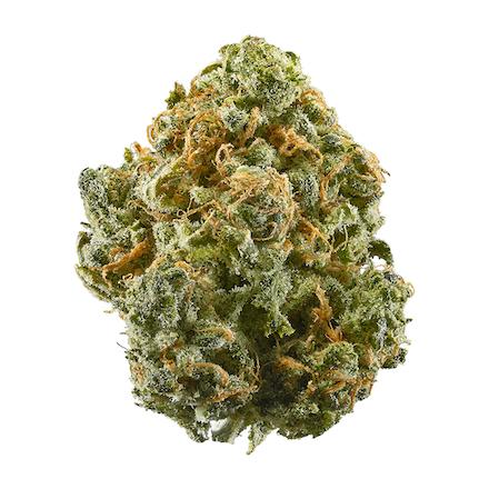 Picture of Blue Dream strain