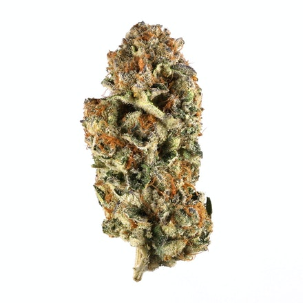Picture of Do-Si-Dos strain