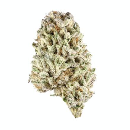 Picture of Raspberry Kush strain