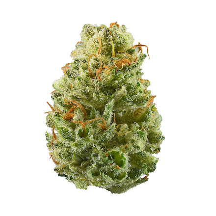Picture of Strawberry Cough strain